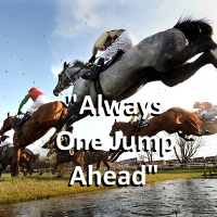 cheap horse quotes